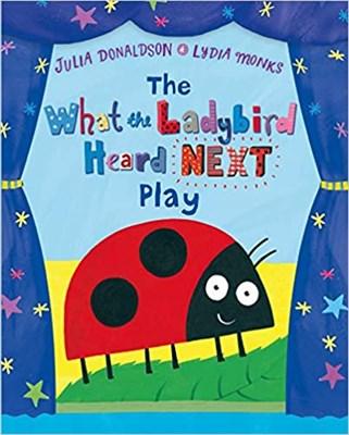 What the Ladybird Heard Next - Play - фото 4483