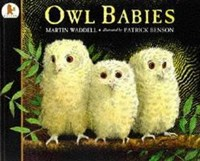 Owl Babies • Big Book